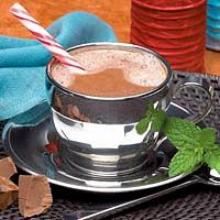 Creamy MINT Hot Chocolate Drink Mix 702 WHOLESALE 50% off (DHS) Made by Robard Advanced Health Systems