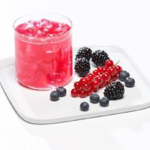 Berry Blast Proti-15 Cold Drink -B101 Less than $9/bx (DHSM) by Bariatrix