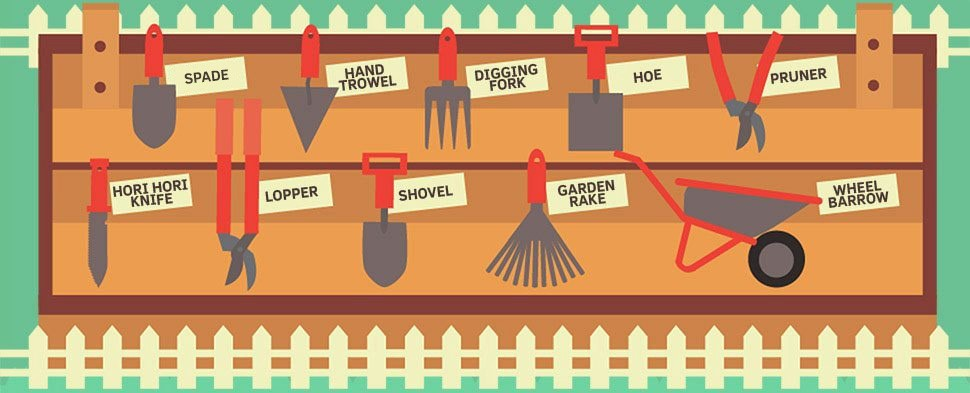 The Beginner's Guide to Gardening and Landscaping
