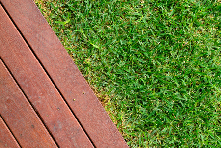 How to Establish a Lawn