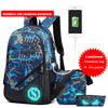 Glow in Dark USB Charging Backpack - BG's Cool Nerd