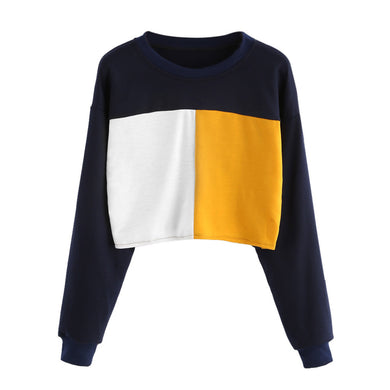 Color Blocked Cropped Sweatshirt