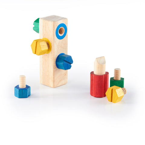 Screw Block.  Educational Focus: Fine motor skills and hand-eye coordination.