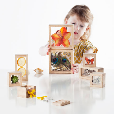 Treasure Blocks - Clear.  Smooth hardwood frames with inset, transparent acrylic windows have a removable panel to place small objects to observe or display. Ideal for color exploration and light table activities.
