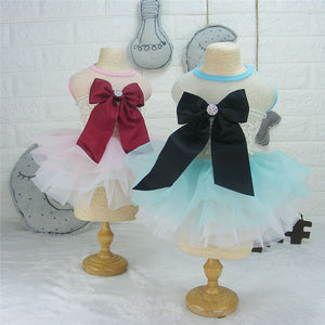 Beautiful Lacy Big Bow Dresses for Puppies and Dogs