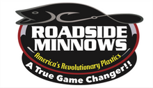 Roadside Minnows