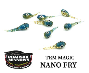 Nano Fry - Roadside Minnows