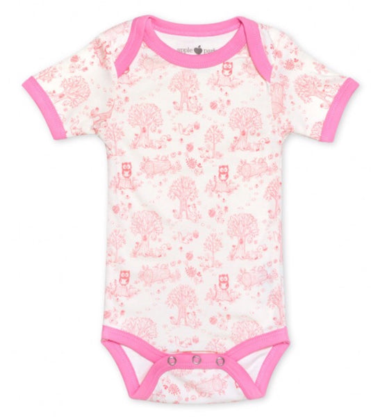 Short Sleeve Bodysuit Onesie-Story Book Gift Box