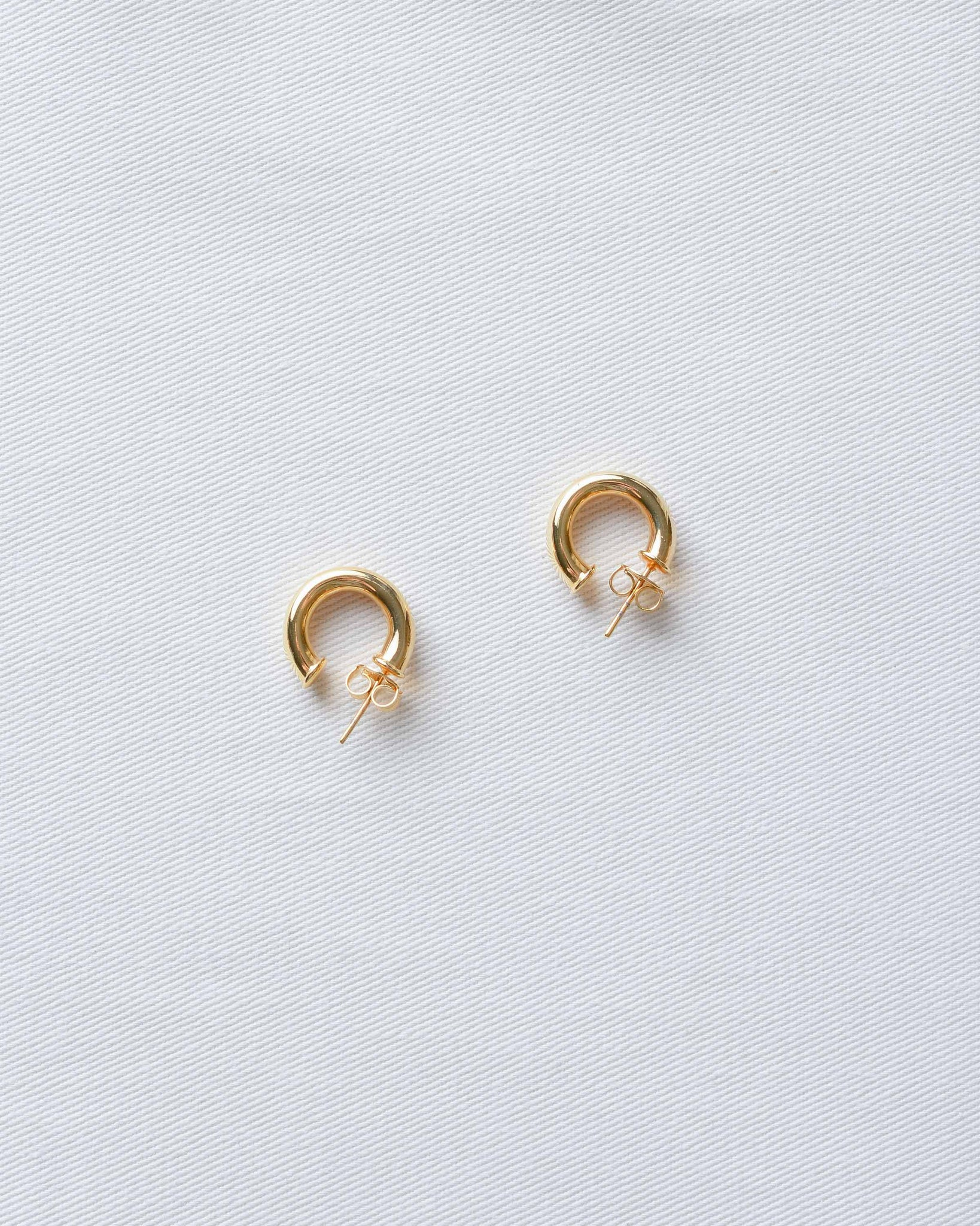 Small Gold Thick Hoop Earrings