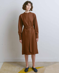 Brown Belt Dress