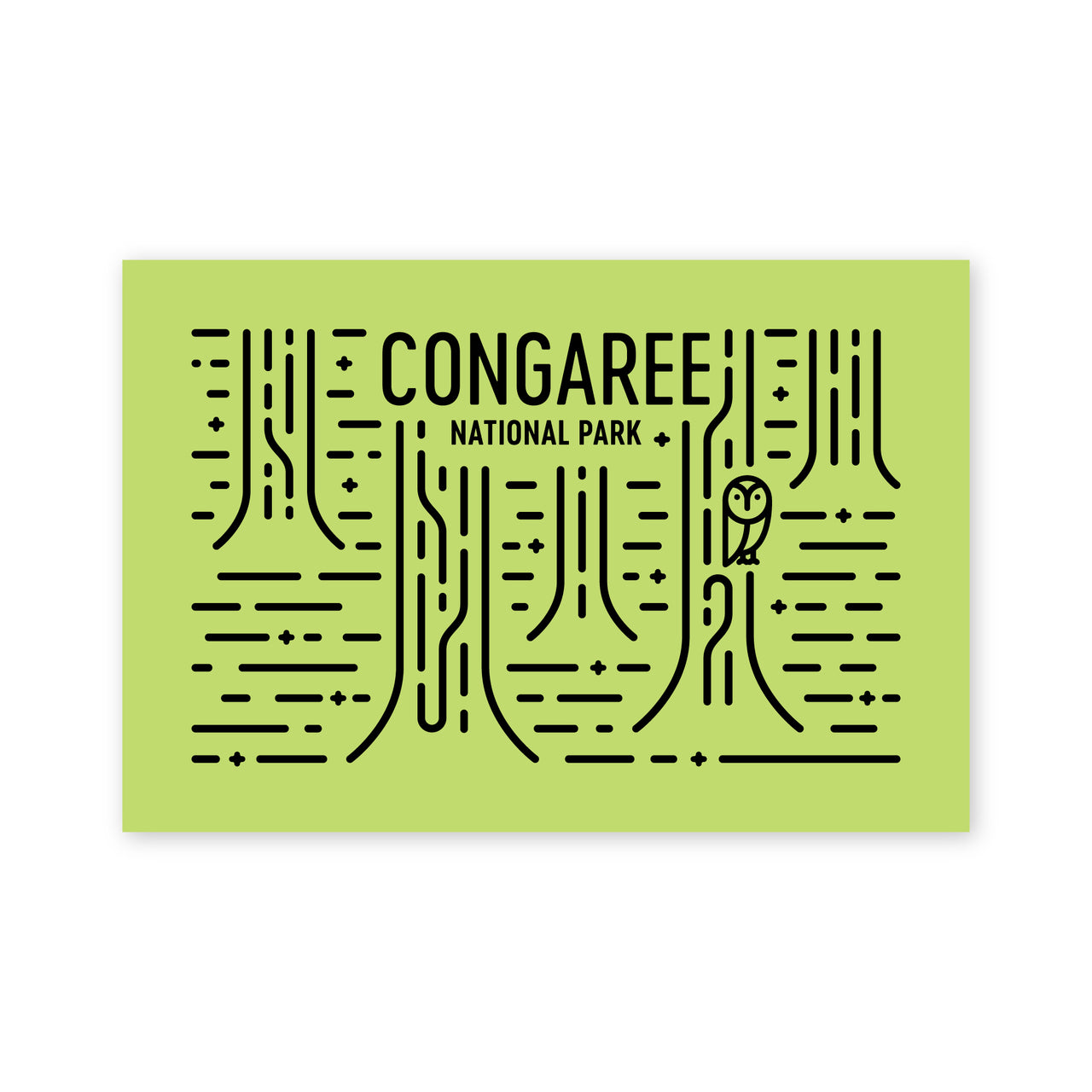 Congaree National Park Postcard