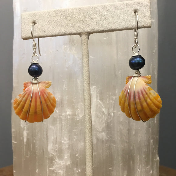 sunrise shell earrings with Fresh water Pearls