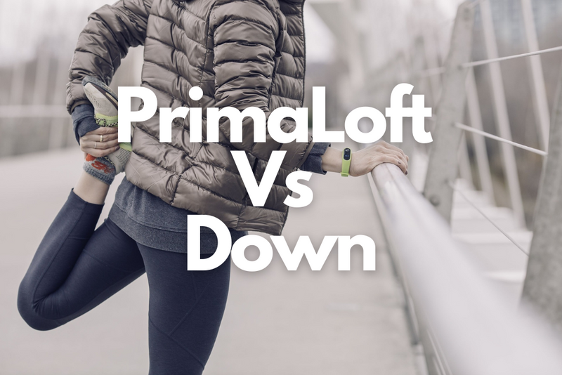 Which is Better? PrimaLoft Vs Down