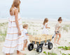 How to Build a Beach Cart with Victoria