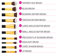 Sculpt and Blend 3 - 10 Piece Brush Set