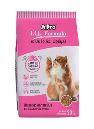 A Pro IQ Formula for all cat 20 kg