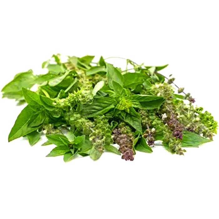 Hairy Basil per bundle