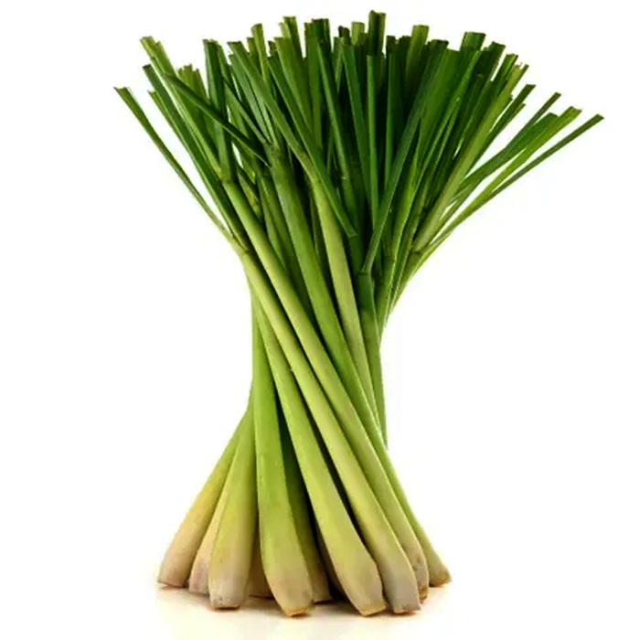 Lemongrass per bundle