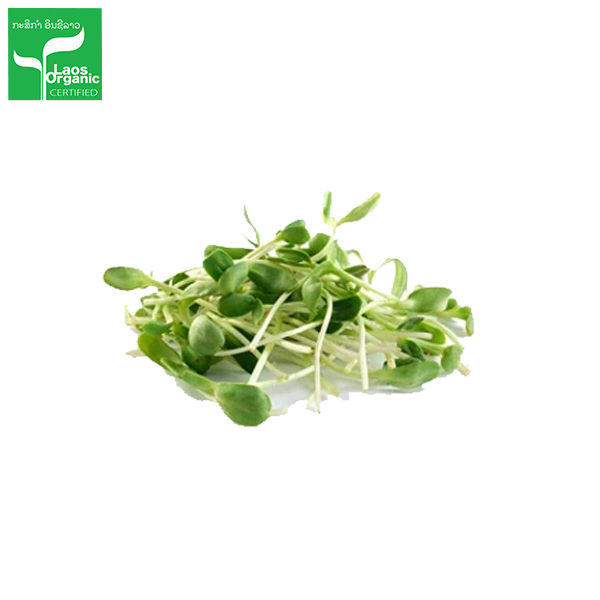 Organic Sunflower Sprouts per 350g bag