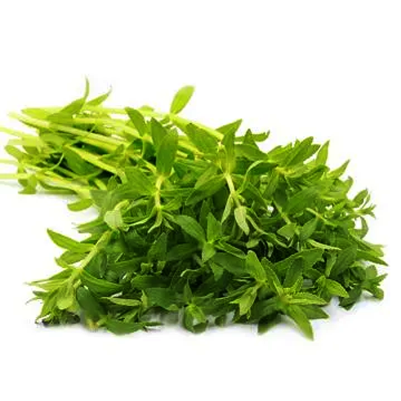 Rice Paddy Herb per bundle