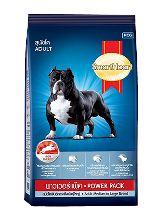Smart Heart Power Pack (Adult) 20 kg