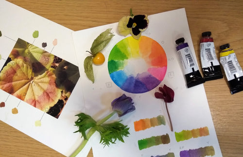 Botanical Drawing: Colour Mixing and Matching in Watercolour
