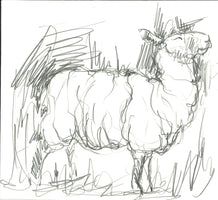 244, Reece Ingram, A scruffy mule, Cowlands, Cornwall, Pencil on paper 164x 181mm