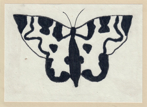 390, Anne Rothenstein RWA, Moth, Mixed media 140x190mm
