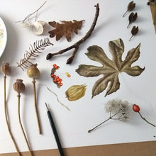 Botanical Art: Seasonal Treasures in Watercolour