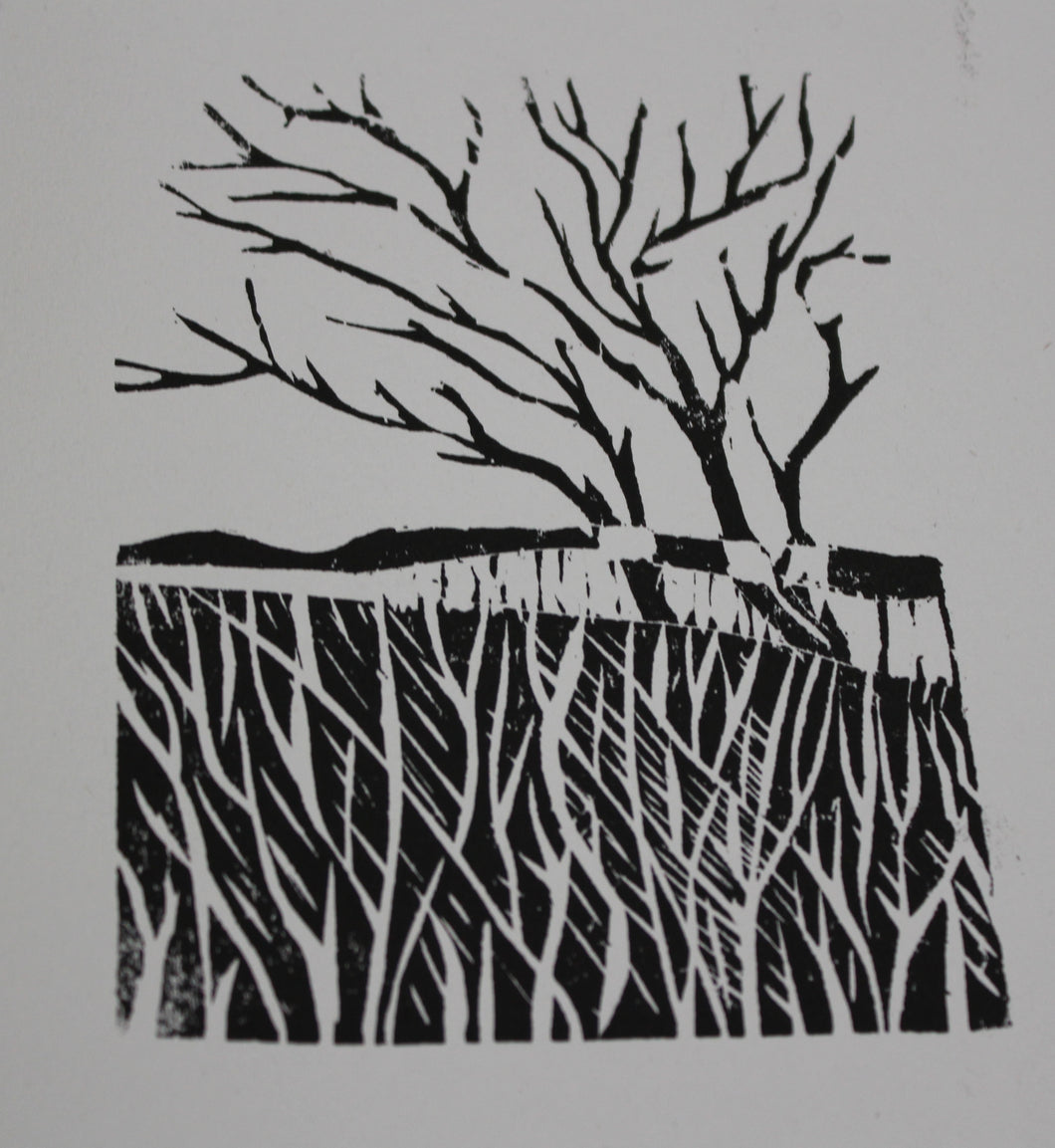 Introduction to Woodblock Printmaking