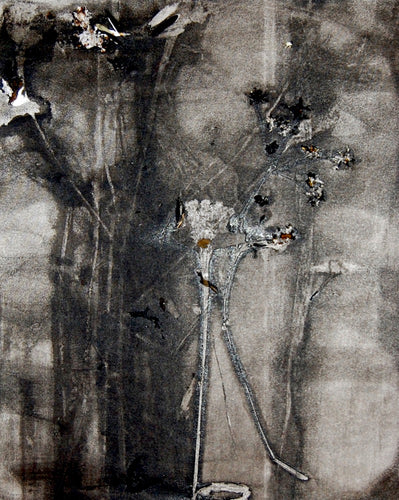 Charlotte Price RWA, Ruderal - a plant that grows on Wasteland (iii)