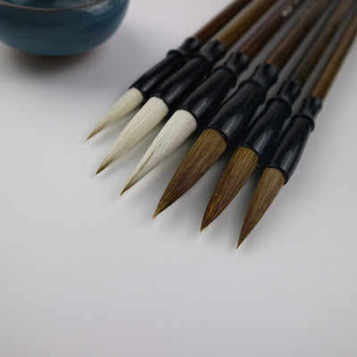 6 piece-Chinese Calligraphy Brushes Set