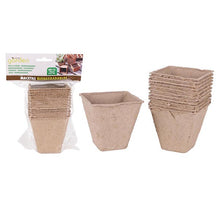 Set de pots Little Garden Biodégradable (12 Uds)