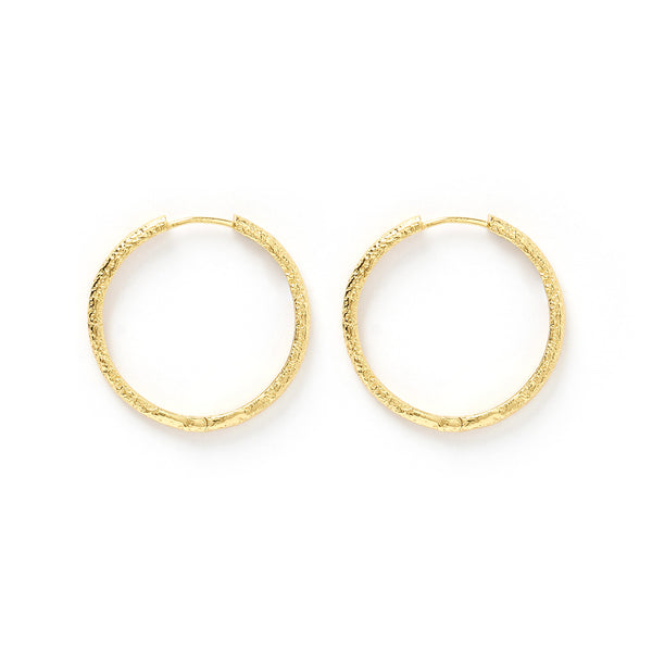 Sebastian Gold Hoop Earrings