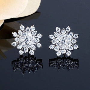Sliver Snowflake Zircon Stud Earrings For Women