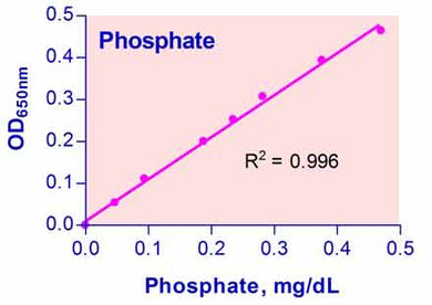 Phosphate Assay Kit (DIPI-500)
