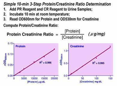 Protein Creatinine Ratio Assay Kit