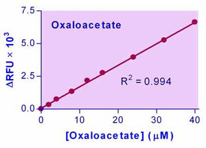 Oxaloacetate Assay Kit