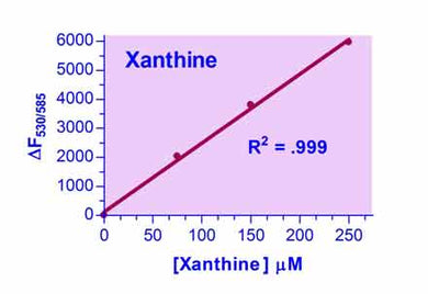 Xanthine Assay Kit