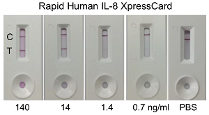 Rapid Human Interleukin-8 XpressCard (10 tests)