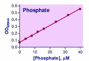 Phosphate Assay Kit (POMG-25H)