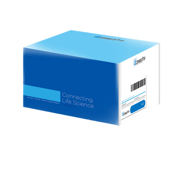 ZiXpress-32 Bacteria Genomic DNA Extraction Kit (Non pre-filled)