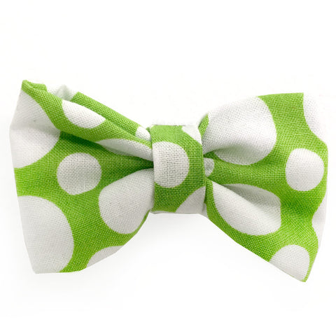 632 Barley's Green and White Circles Dog Bow Tie
