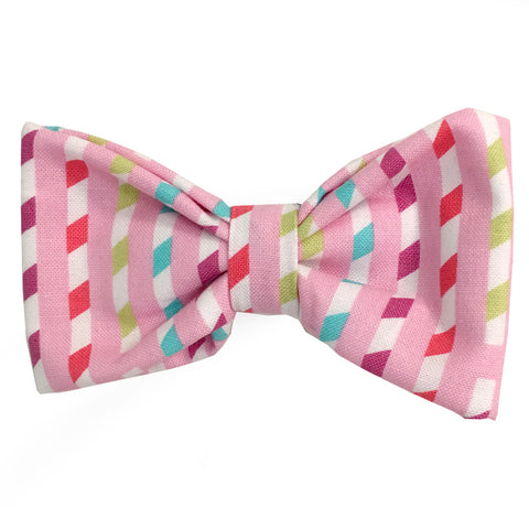 640 Barley's Spring Ribbon Dog Bow Tie