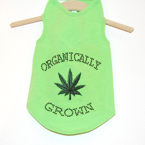 711T Daisy & Lucy Organically Grown Tank