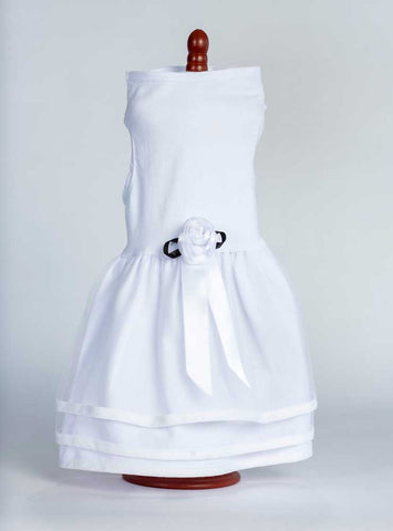 white-dog-wedding-dress-daisy-lucy-428