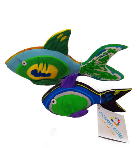 Ocean Sole Reef Fish