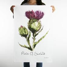 clare baird flower of scotland tea towel