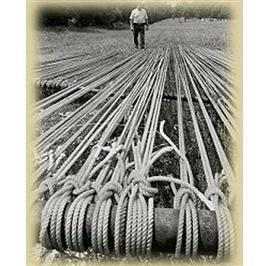 Grant Ranch Rope