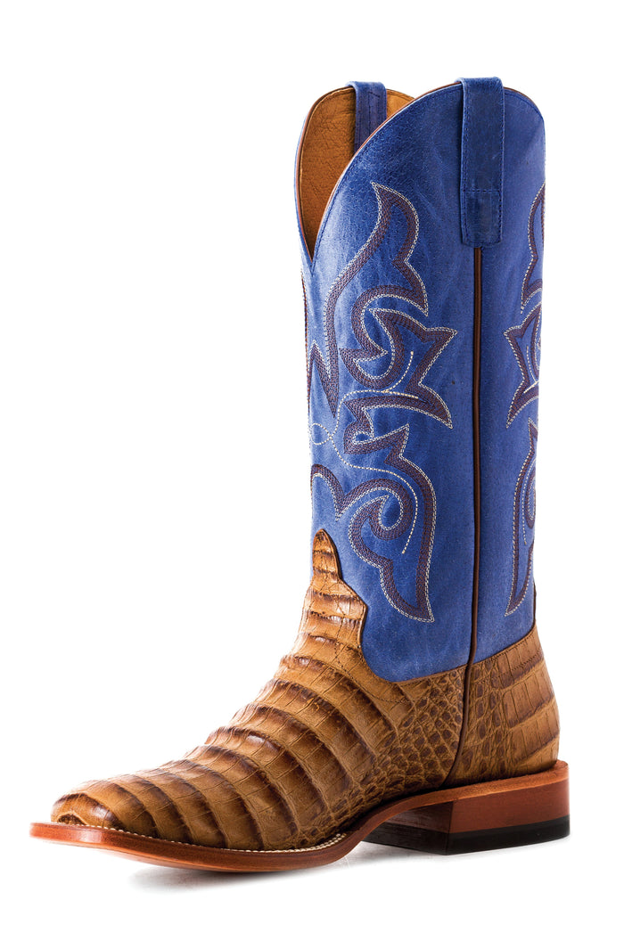 Horse Power Adult Boots - HP1842 Toasted Caiman Print Bottom with Blue Sinsation Top